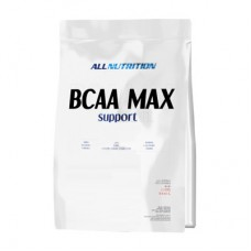 BCAA Max Support All Nutrition (1000 гр)
