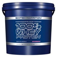 100% Whey Protein Scitec Nutrition (5000 гр)