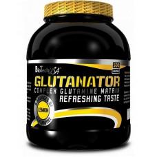Глютамин Glutanator BioTech USA (500 г)